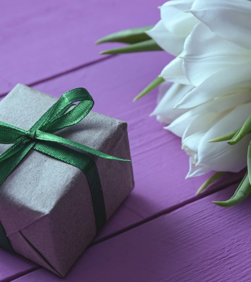 Tulips Gift Flowers White Flowers  - AVAKAphoto / Pixabay